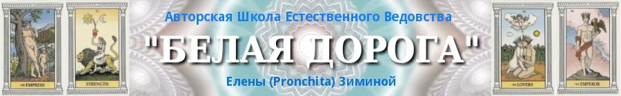 """Школа """"Белая Дорога"""""""